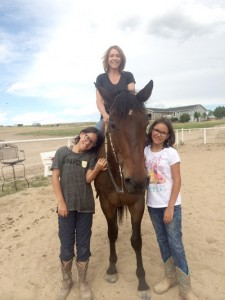 terolyn horse rescue