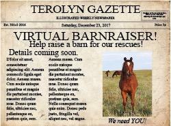 Terolyn Horse Rescue Barnraiser